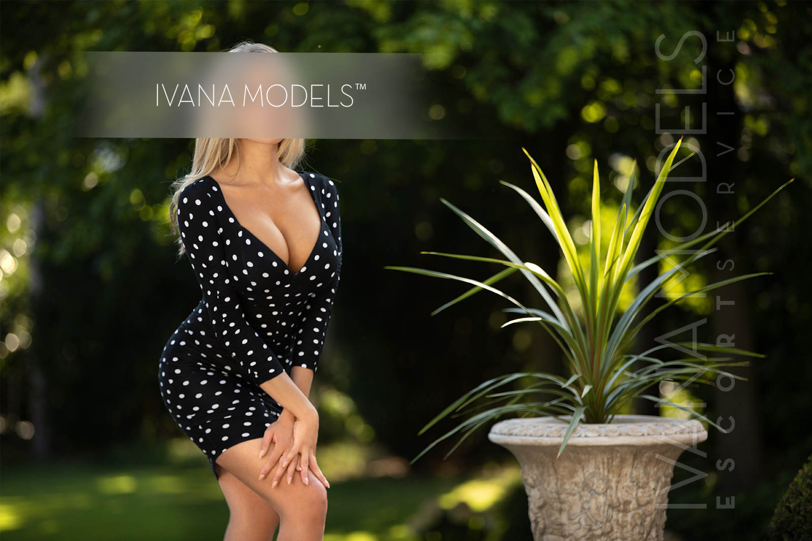 Escort service is about Businessmen, diplomats and managers in high positions - Julia - Escorts Frankfurt